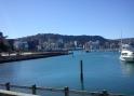 2011-12-21 Wgtn waterfront (3)