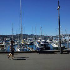 2011-12-21 Wgtn waterfront
