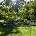 Katherine Mansfied Park, Thorndon
