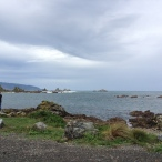 2013-04-21 Island Bay (13)