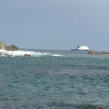 2013-04-21 Island Bay (26)