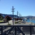 2011-12-21 Wgtn waterfront (6)