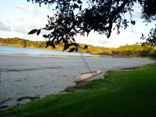2012-05-12 Waiheke (2)