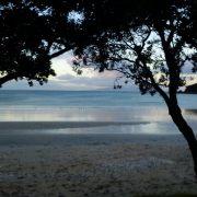 2012-05-12 Waiheke (5)