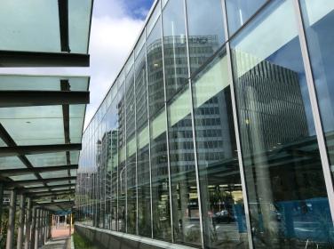 2017-02-12 Wellington Perspectives (1)