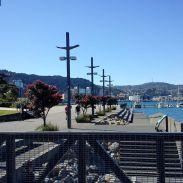 Wellington waterfront 3