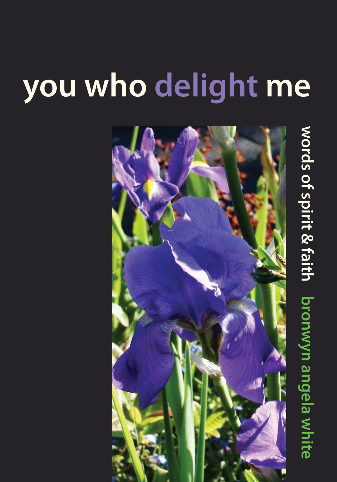 You Who Delight Me front cover graphic.jpg