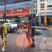 2012-03-22 Wellington (3)