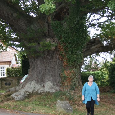 2011 Herefordshire